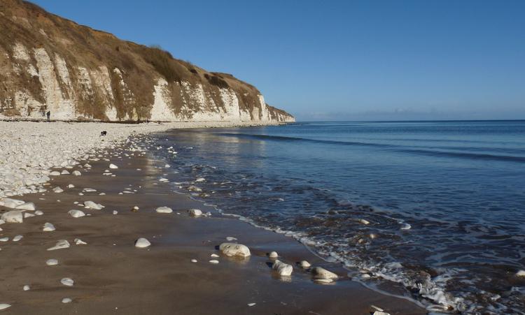 danes-dyke-beach-dog-walk
