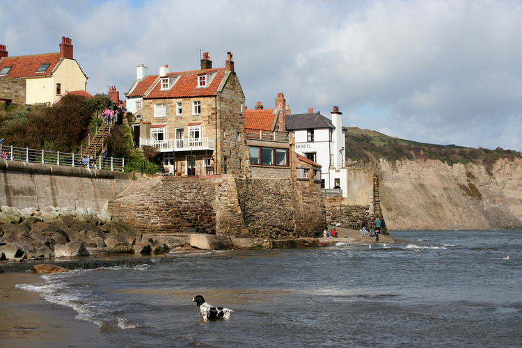 8 Best Coastal Walks for Dogs in Yorkshire – Log Cabins ...
