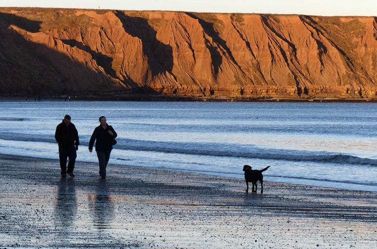 filey-dog-walkers