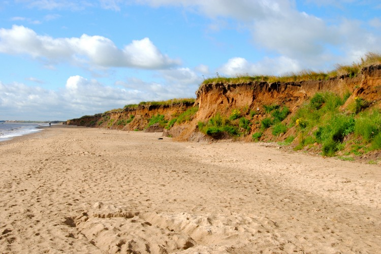 fraisthorpe-beach-dog-walk