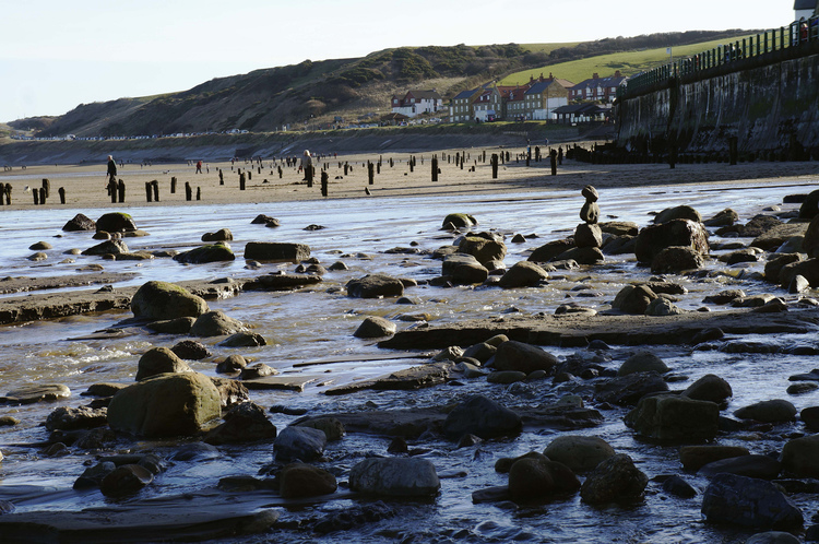 The sea groynes at Sandsend offer lots for dogs to explore. Image Credit